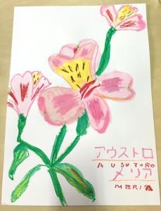 アウストロメリア(小学4年生)